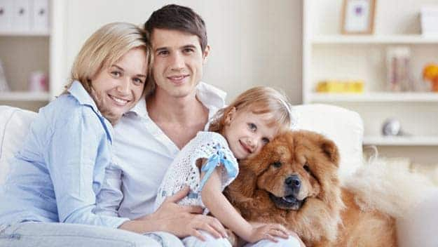 Wills & Trusts dog-young-family Direct Wills Lisson Grove